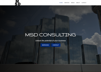 MSD Consulting
